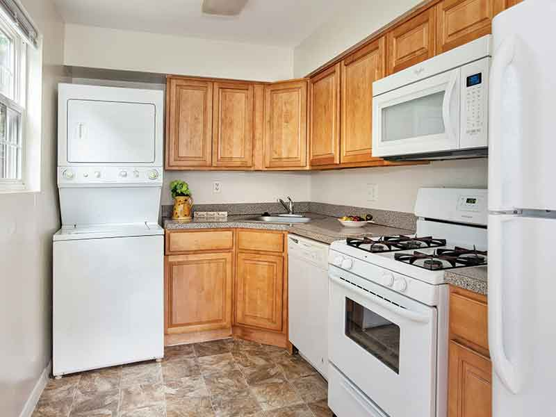 Large kitchen space in a Cedar Brook apartment